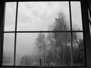 Condensation in window pane Camberwell