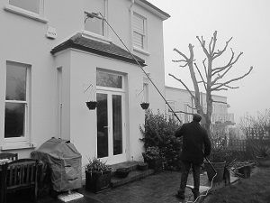 Spick & Span clean windows in the rain in Forest Hill1